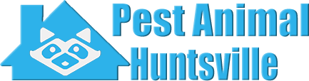 Huntsville Wildlife and Animal Removal